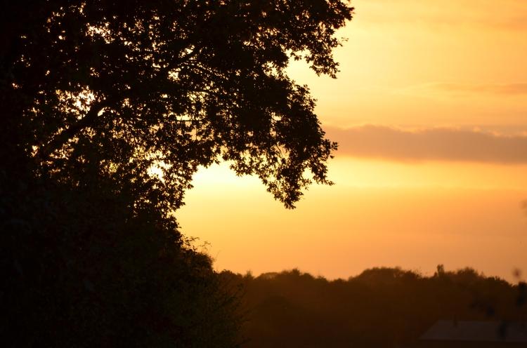 Sunsets4